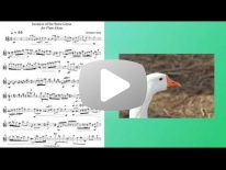 Invasion of the Snow Geese Articulation Tutorial